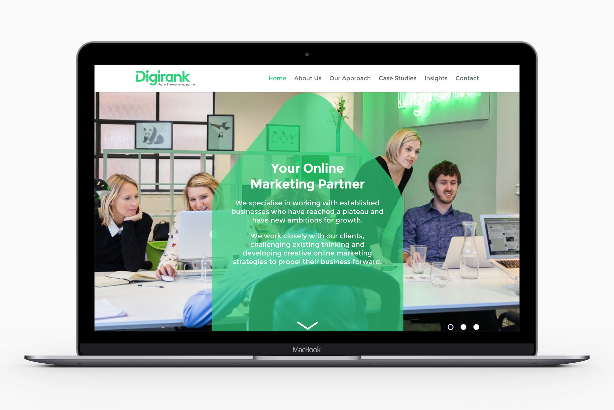 website design homepage for digirank